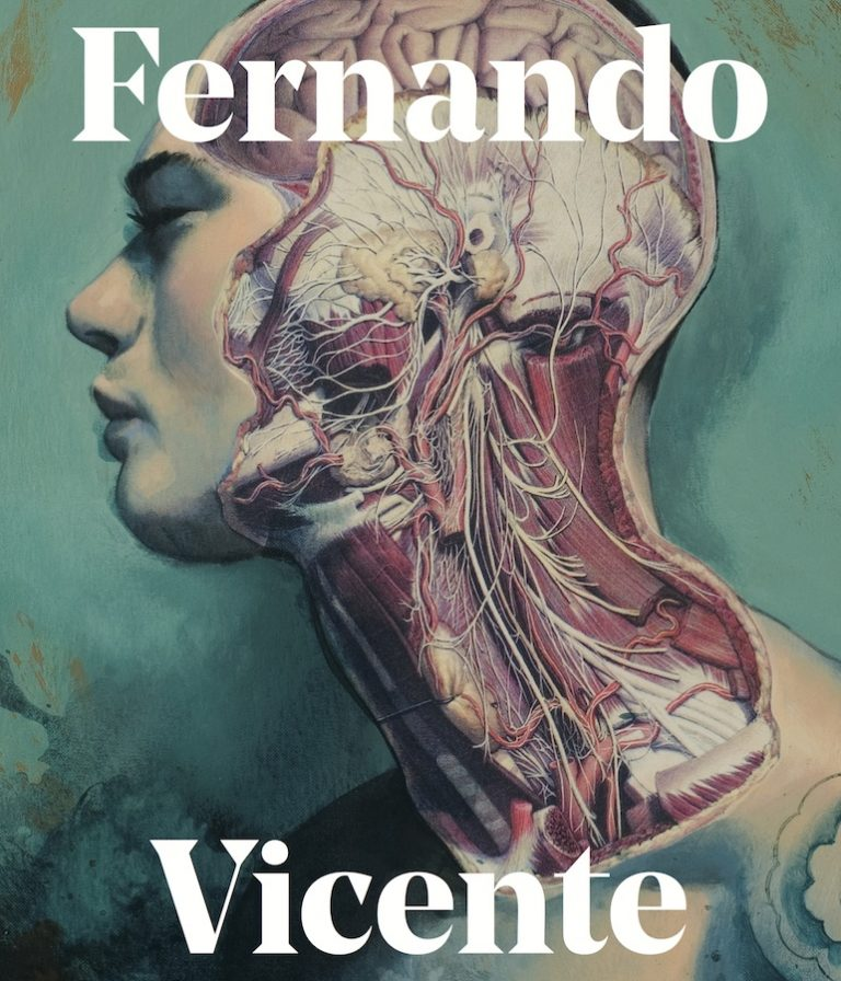 Illustrated Book / Fernando Vicente