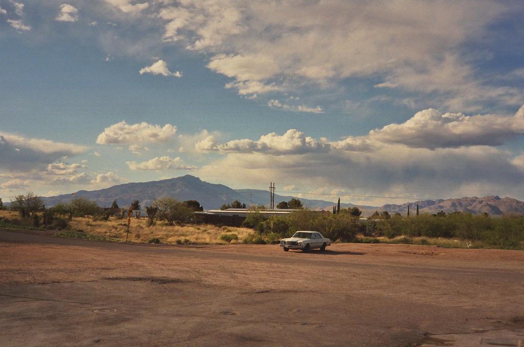 landscape-Anna_Verlet_Shelton-10.jpg