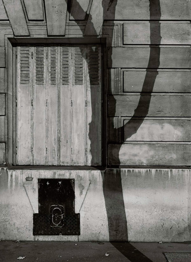 Paris Tree Shadows / Michael Wolf (9)
