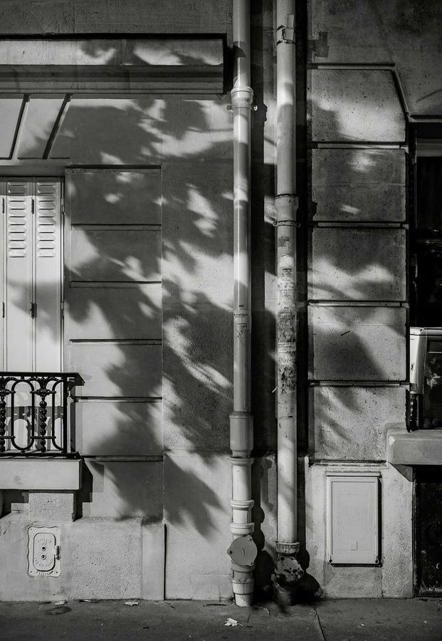 Paris Tree Shadows / Michael Wolf (6)