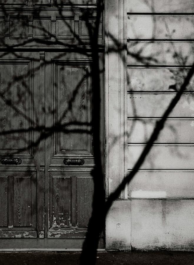 Paris Tree Shadows / Michael Wolf (2)
