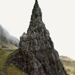 Sentinels / Paul Murphy
