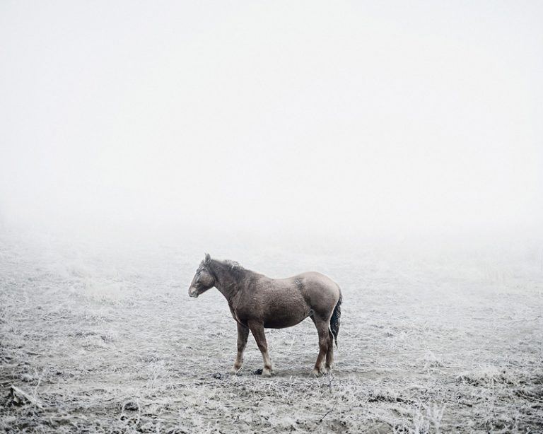 Notes For An Epilogue / Tamas Dezso