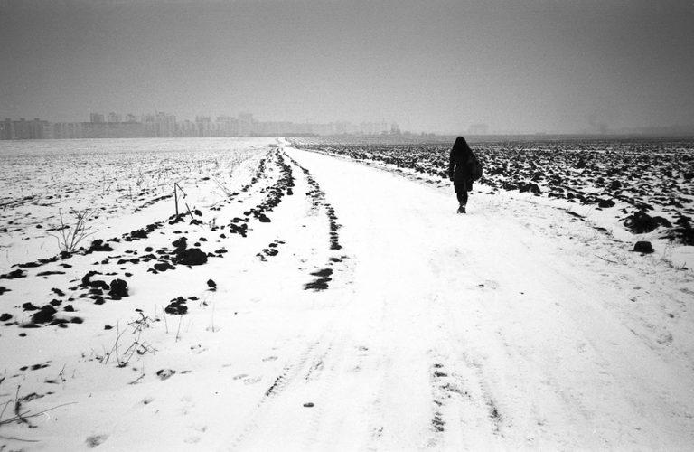Paysages NB / Vitaliy Andreev